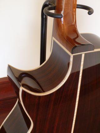 EIR-Englemann Florentine cutaway 218